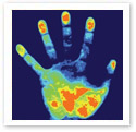 Handprint : Scientific Illustration